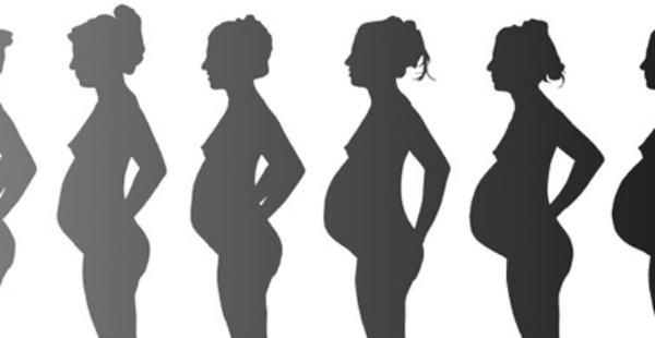 Deveta nedelja trudnoce